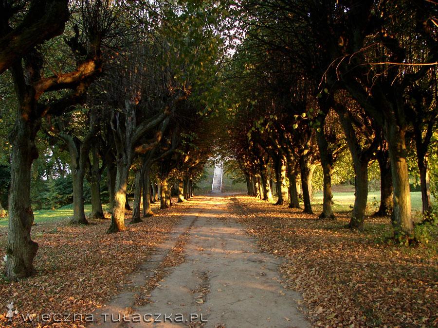Park Ostromecko