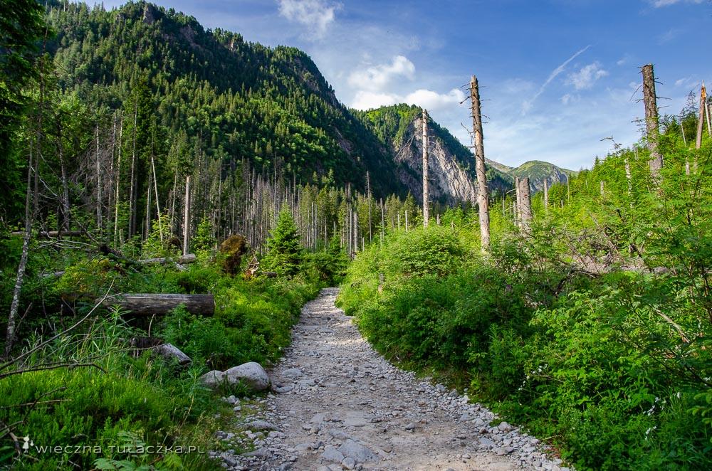 Szlak do Doliny Pięciu Stawów