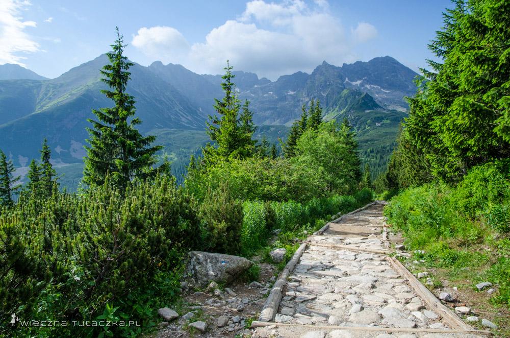 Szlak na Halę Gąsienicową