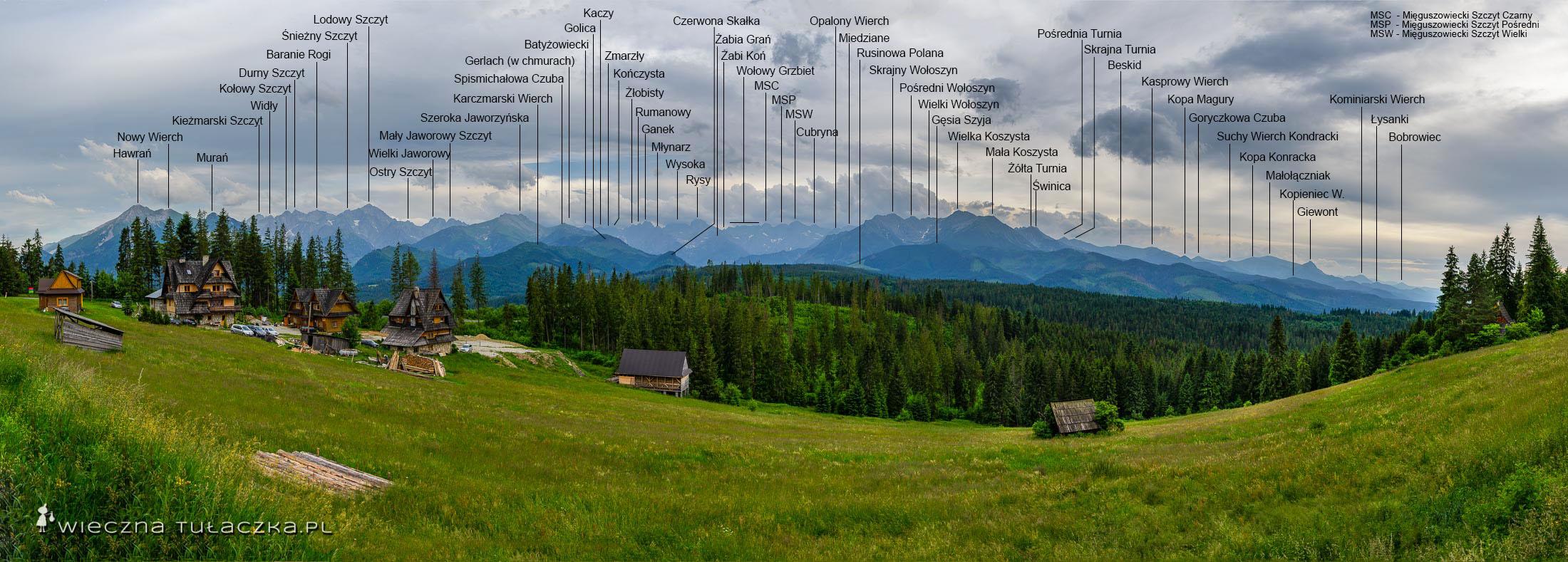 Panorama z Polany Głodówka