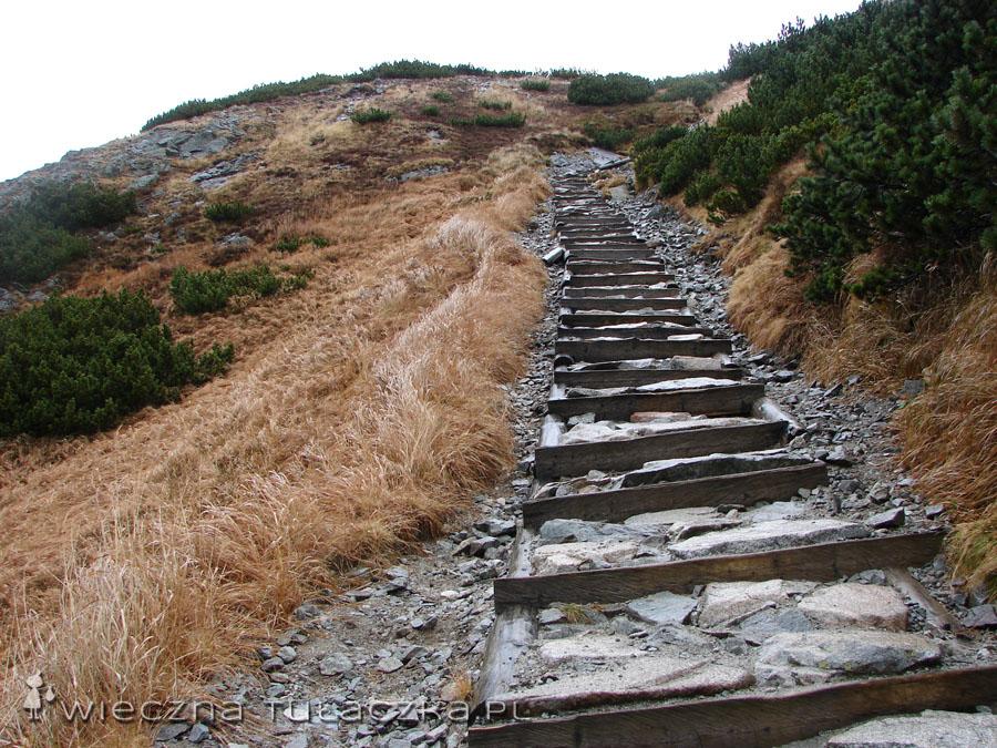 """""""Stairway to heaven"""", a raczej """"Stairway to Świstowa Czuba""""  ;)"""