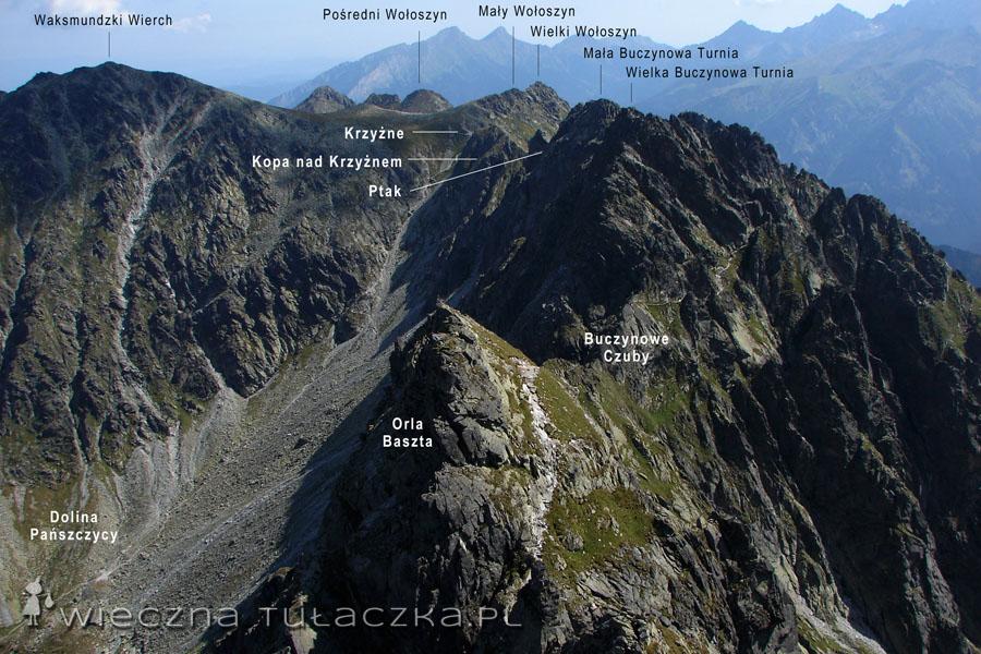 Skrajny Granat - widok na w kierunku Buczynowych Turni