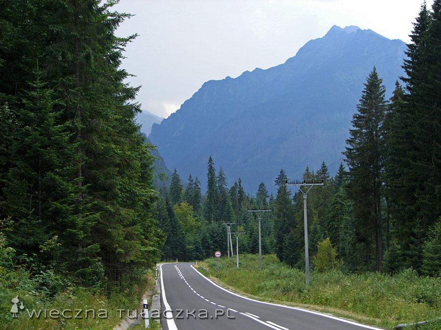 W drodze na Łysą Polanę