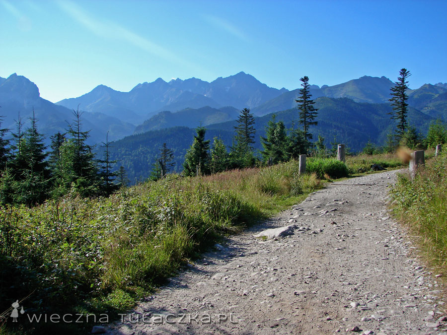 Zielony szlak z Wierch Porońca