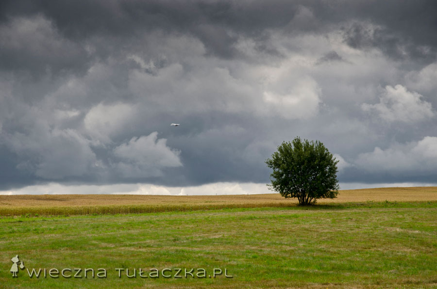 Zostawmy już tych rycerzy :) Na koniec pokażę Wam burzowo-deszczowe obrazki grunwaldzie :) Oby następnym razem pogoda nie zrobiła psikusa!
