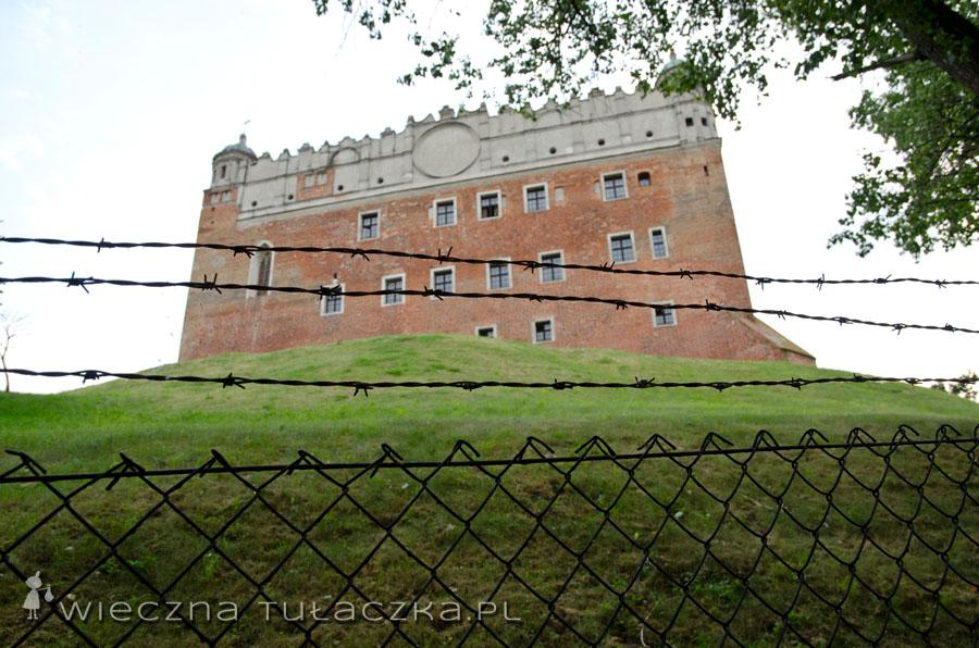 Zamek w Golubiu Dobrzyniu