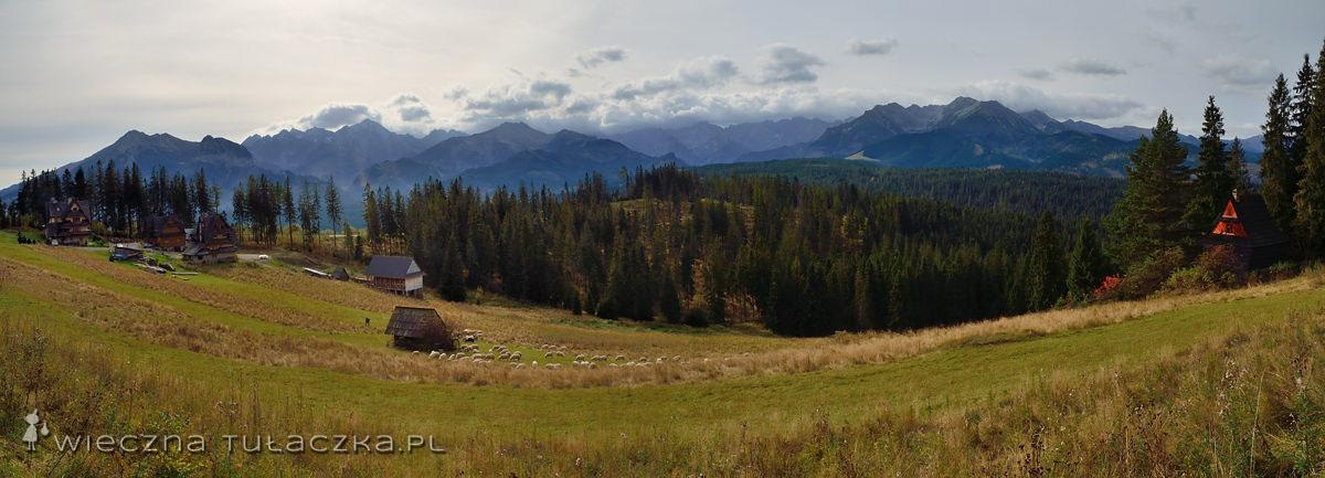 Głodówka - panorama