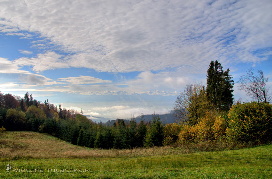 Gorce, szlak na Turbacz