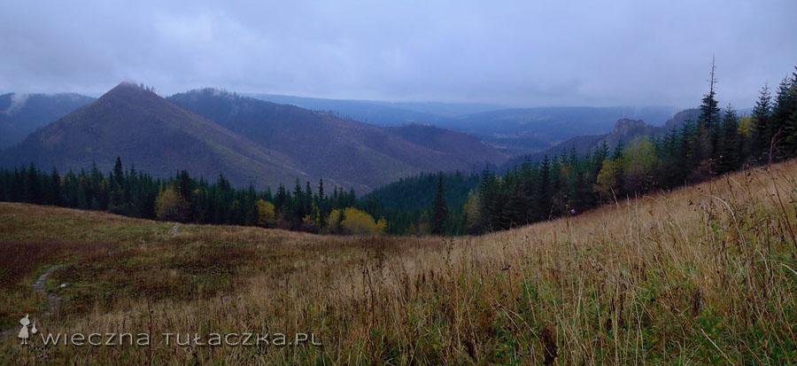 Dolina Kościelska z Polany Upłaz