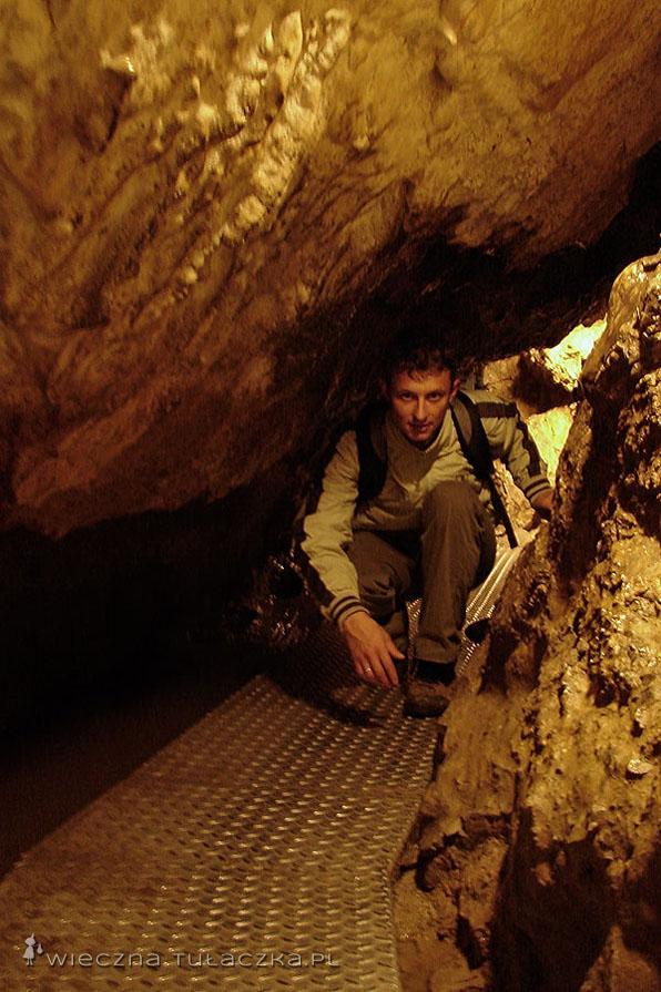 Jaskinia Mroźna