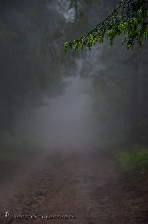 Szlak na Wielką Raczę