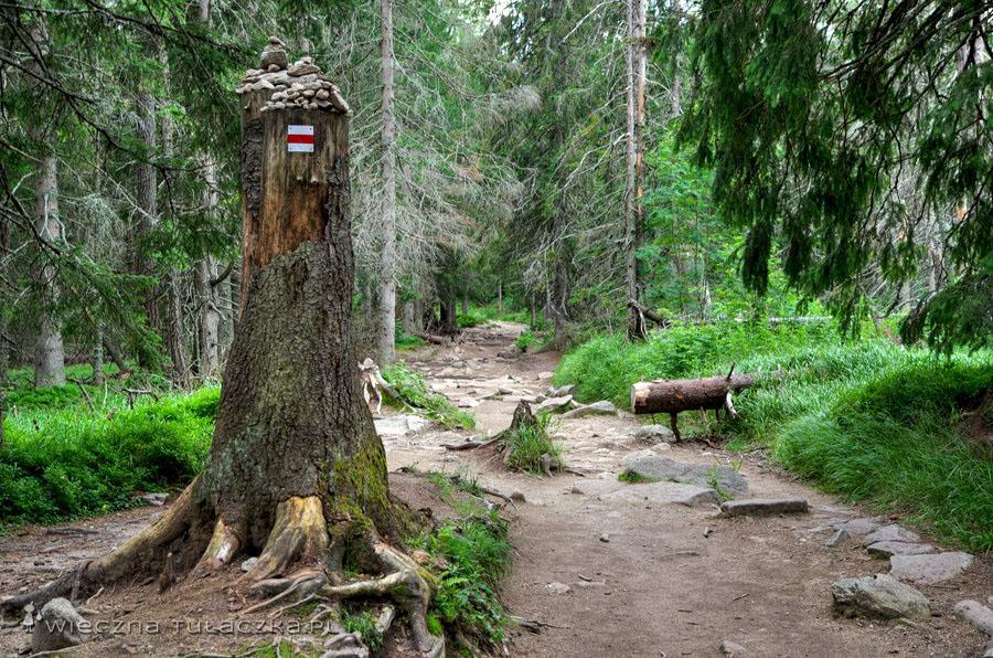 Szlak do Szczyrbskiego Jeziora