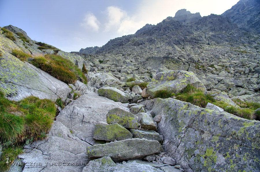 Szlak w Furkotnej Dolinie