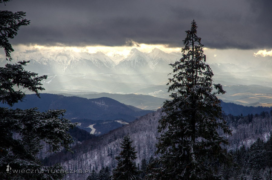 Tatry z Przehyby