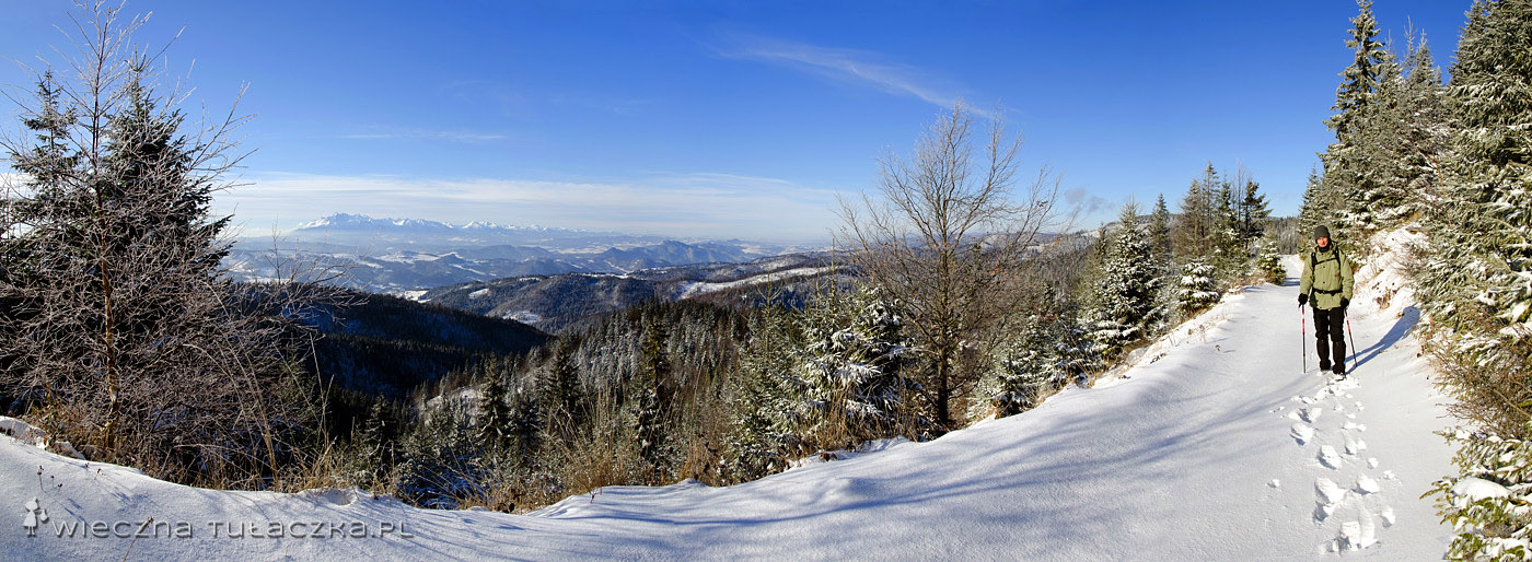 Panorama z Wielkiego Rogacza