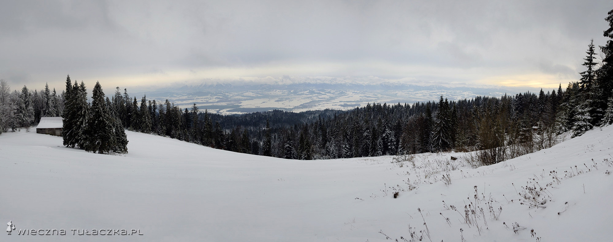 Bukowina Waksmundzka, Gorce