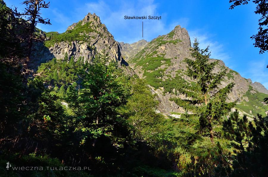 Dolina Staroleśna, widok na Sławkowski Szczyt