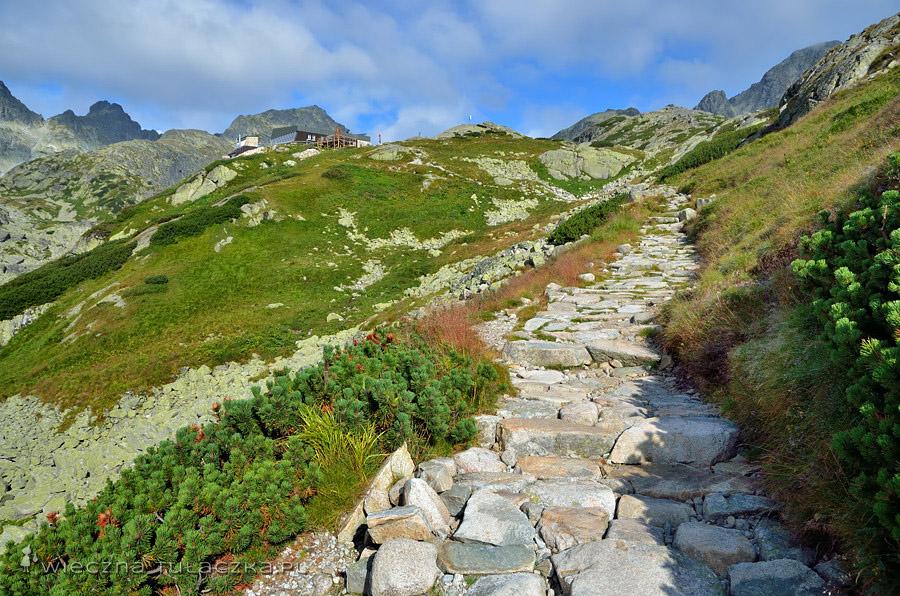 Szlak do Zbójnickiej Chaty