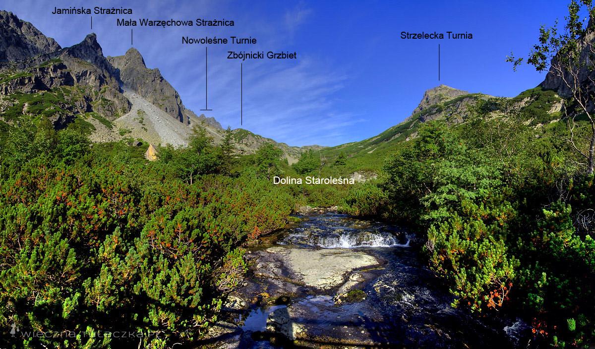 Dolina Staroleśna opis szlaku
