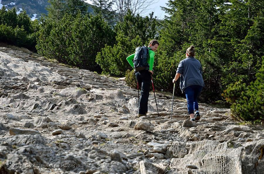 Żółty szlak na Przełęcz między Kopami.