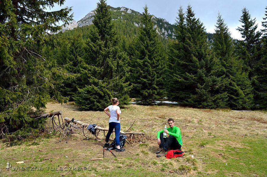 Iwaniacka Przełęcz, w tle Kominiarski Wierch