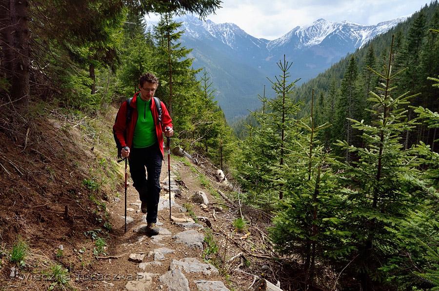 szlak na Iwaniacką Przełęcz