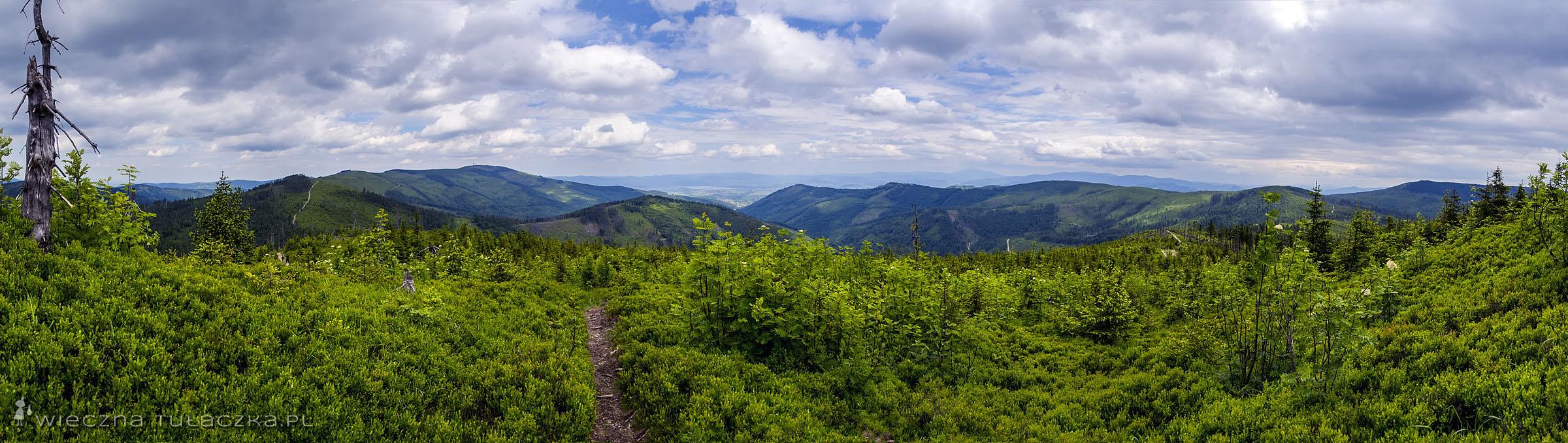 Zielony Kopiec panorama
