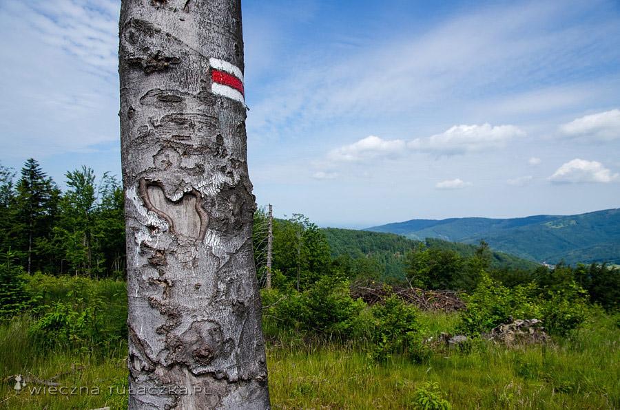 Czerwony szlak przez Beskid Węgierski