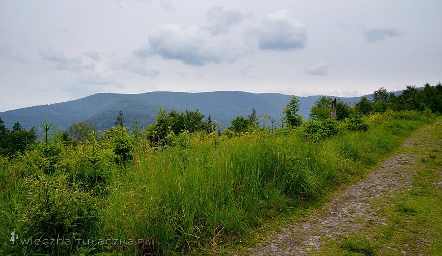 Niebieski szlak do Wapienicy