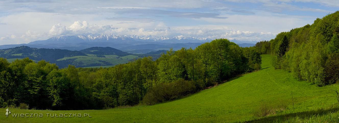 Tatry ze szlaku na Lubań