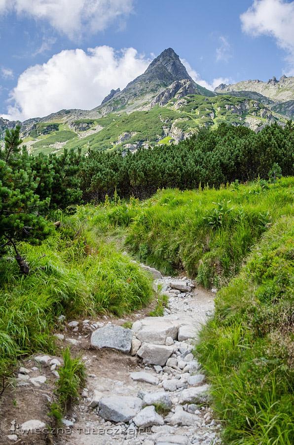 Szlak w Dolinie Mięguszowieckiej