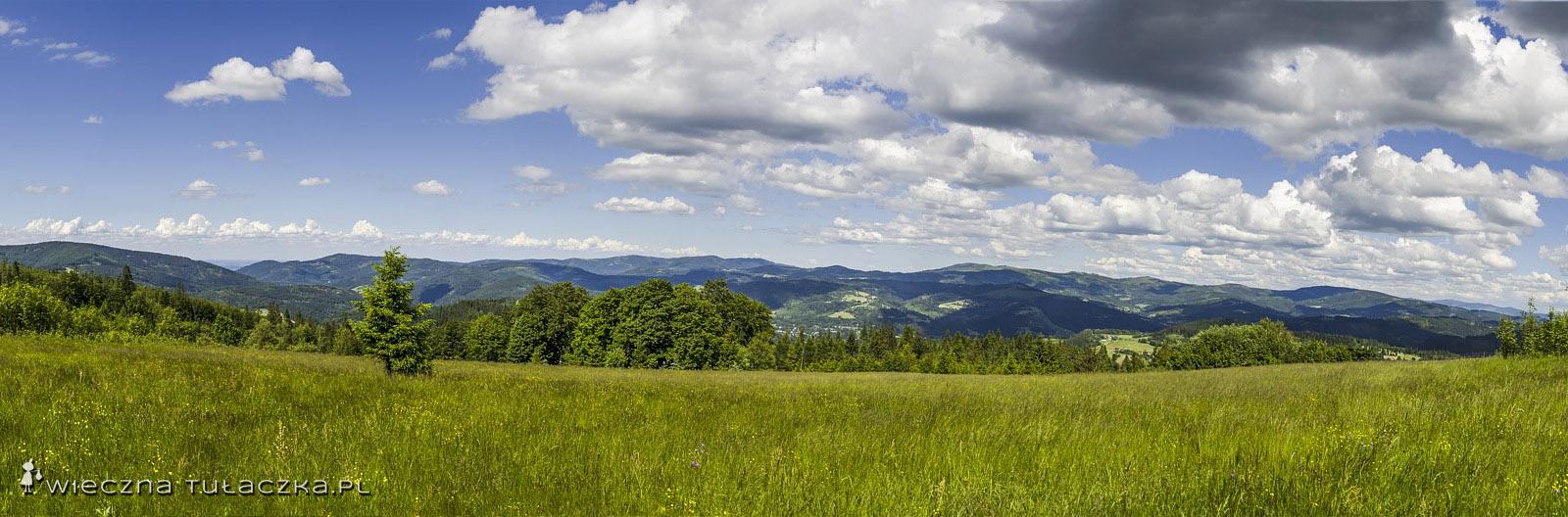 Panorama z Cieślara na Beskid Śląski