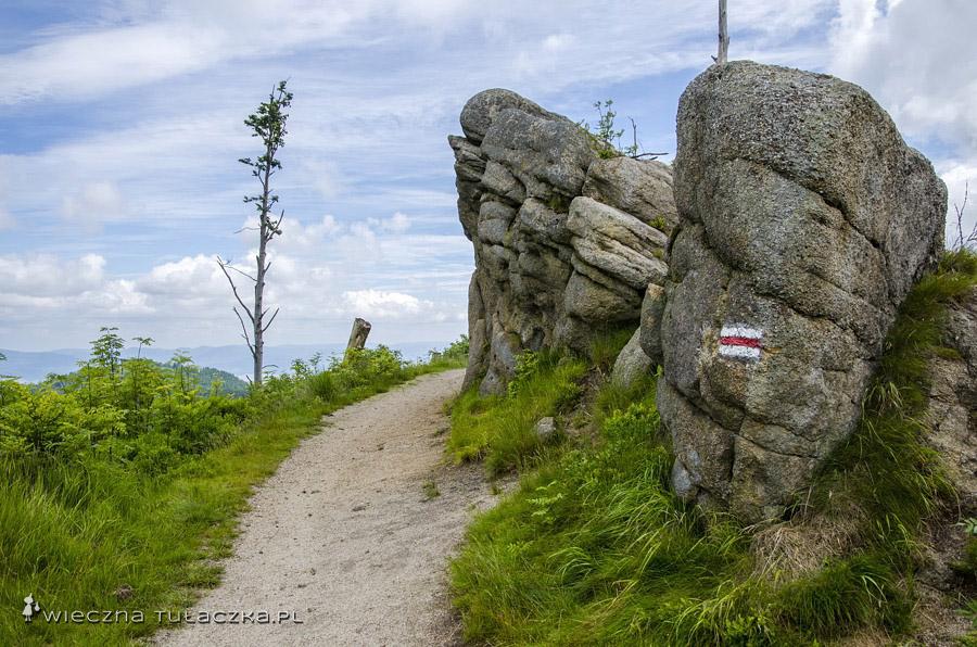 Szlak pomiędzy Magurkami, Beskid Śląski