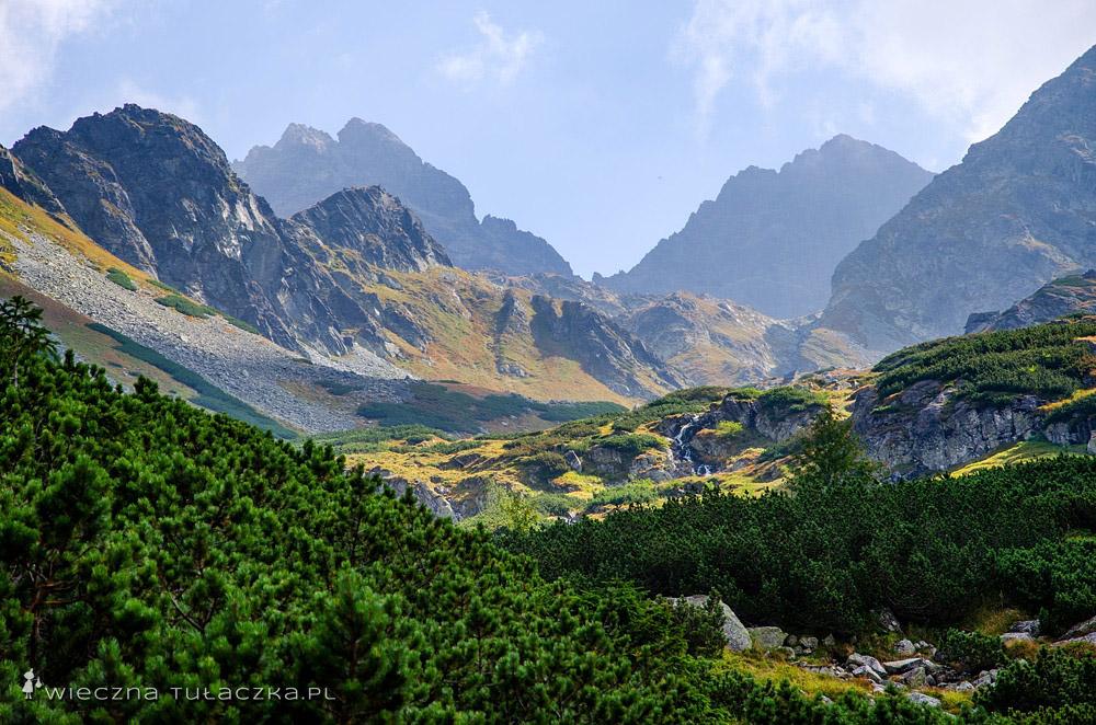 Dolina Litworowa, widok na Dziką Turnię, Rohatkę oraz Małą Wysoką