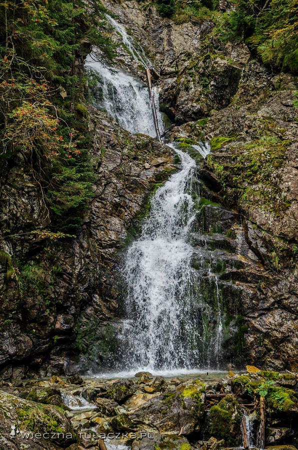 Niżnia Niewcyrska Siklawa, Dolina Koprowa