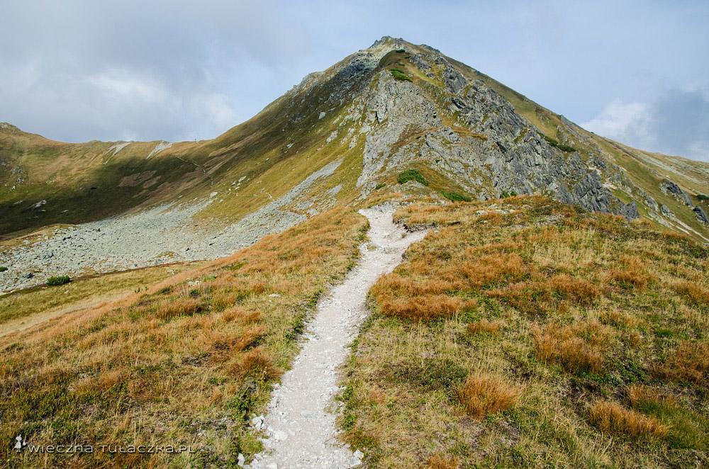 Szlak na Gładką Przełęcz