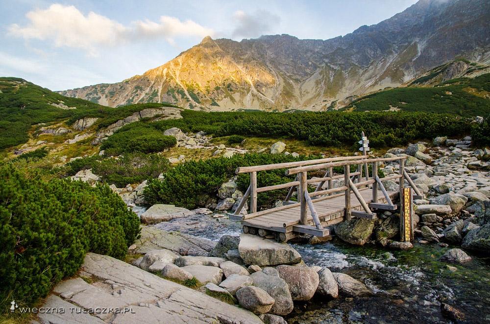 Dolina Pięciu Stawów, rozstaj szlaków