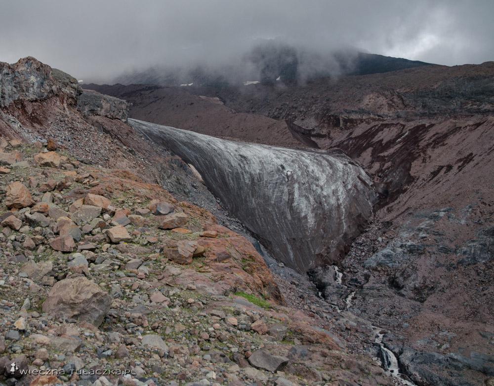 Jęzor lodowca Gergeti