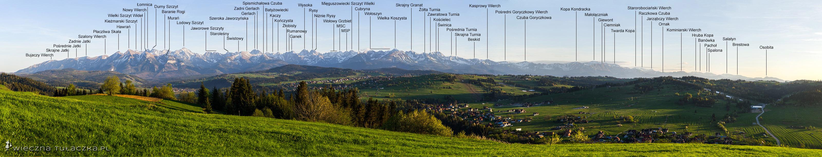 Panorama Tatr z Litwinki