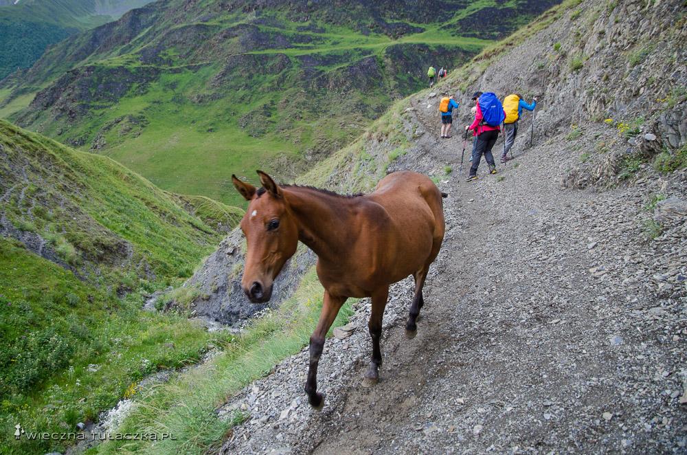 Szlak w Tuszetii