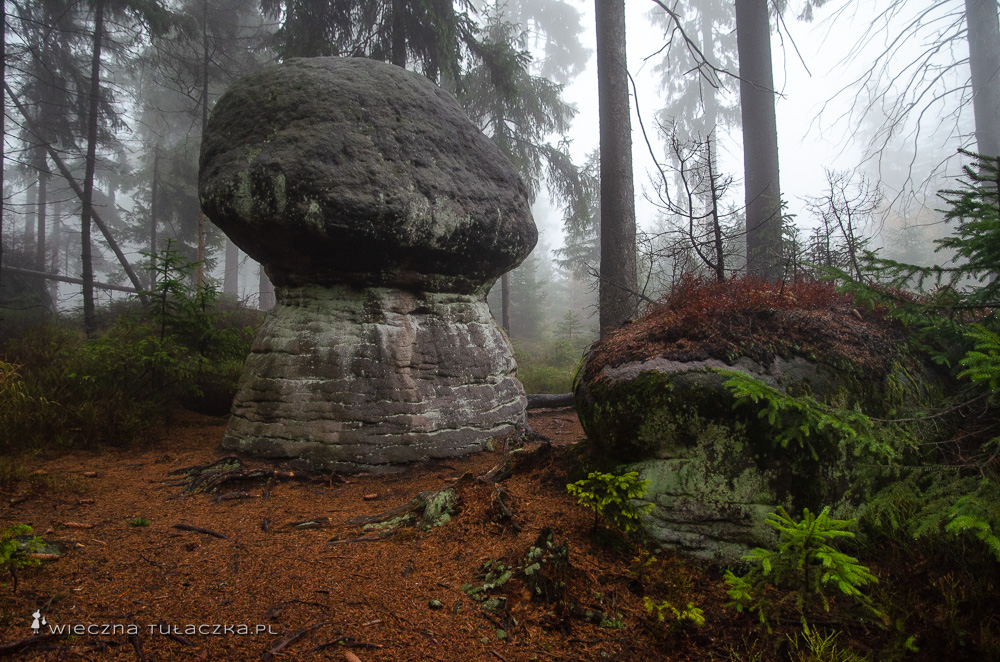 Skalne Grzyby, Góry Stołowe