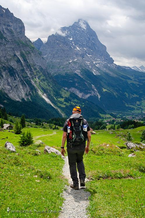 Szlaki w Szwajcarii, Via Alpina