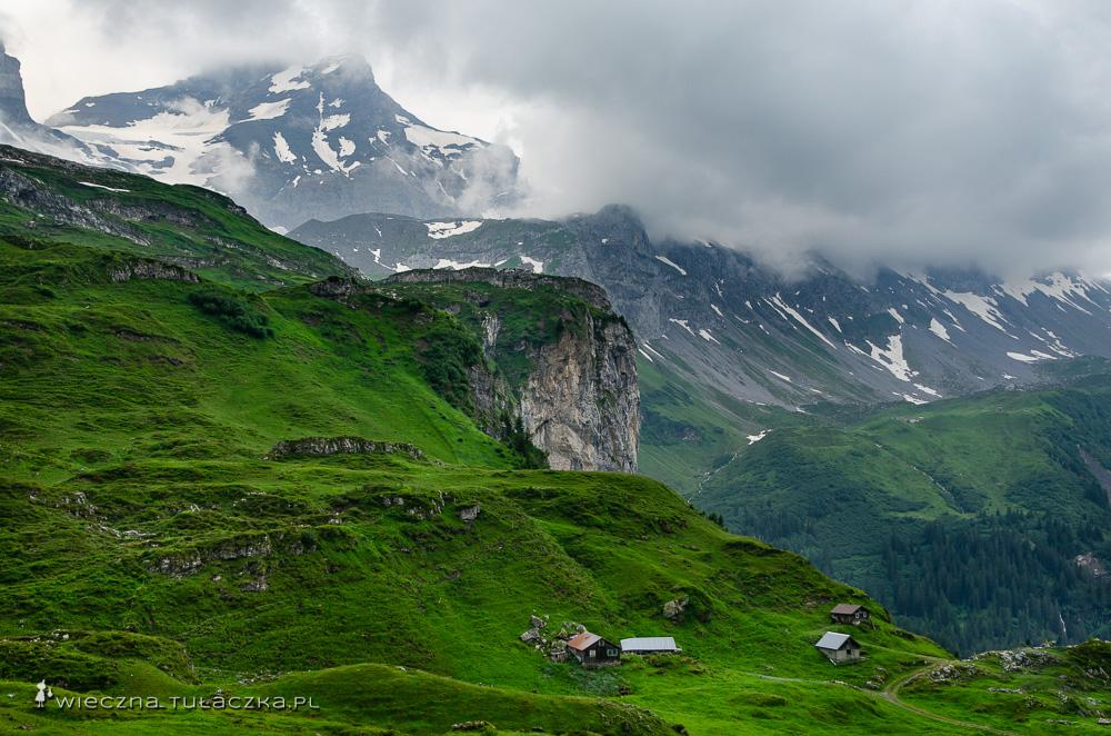 Szlak hikingowy Via Alpina