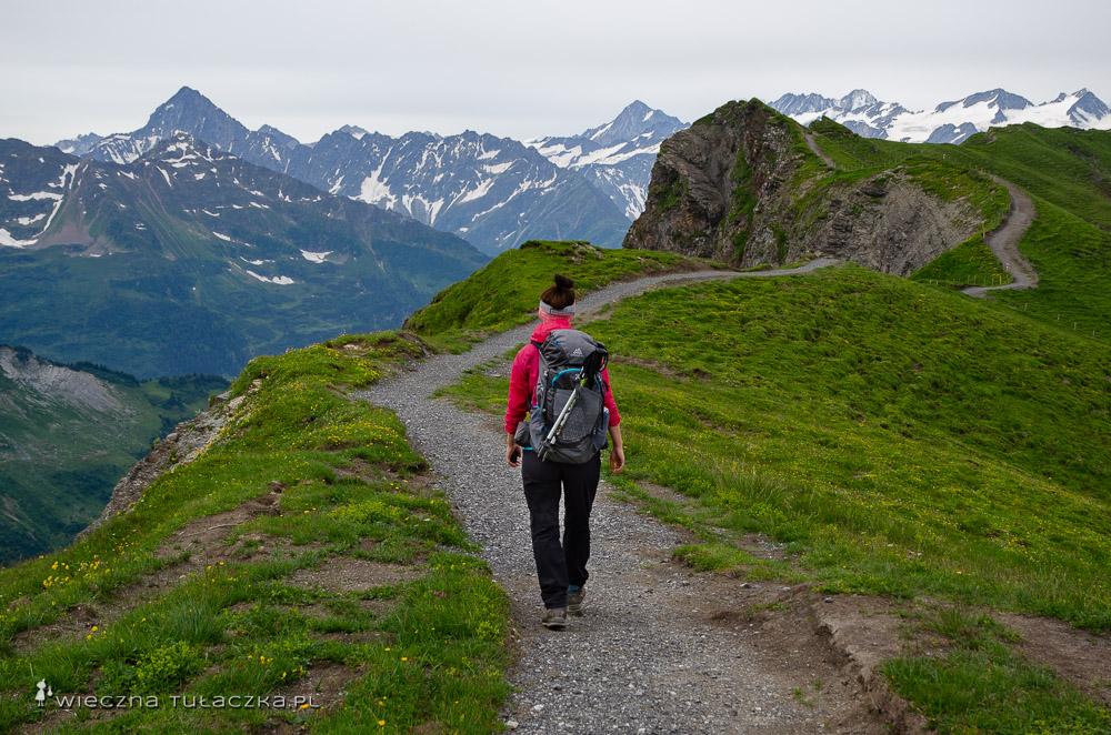 Via Alpina, łatwy szlak alpejski