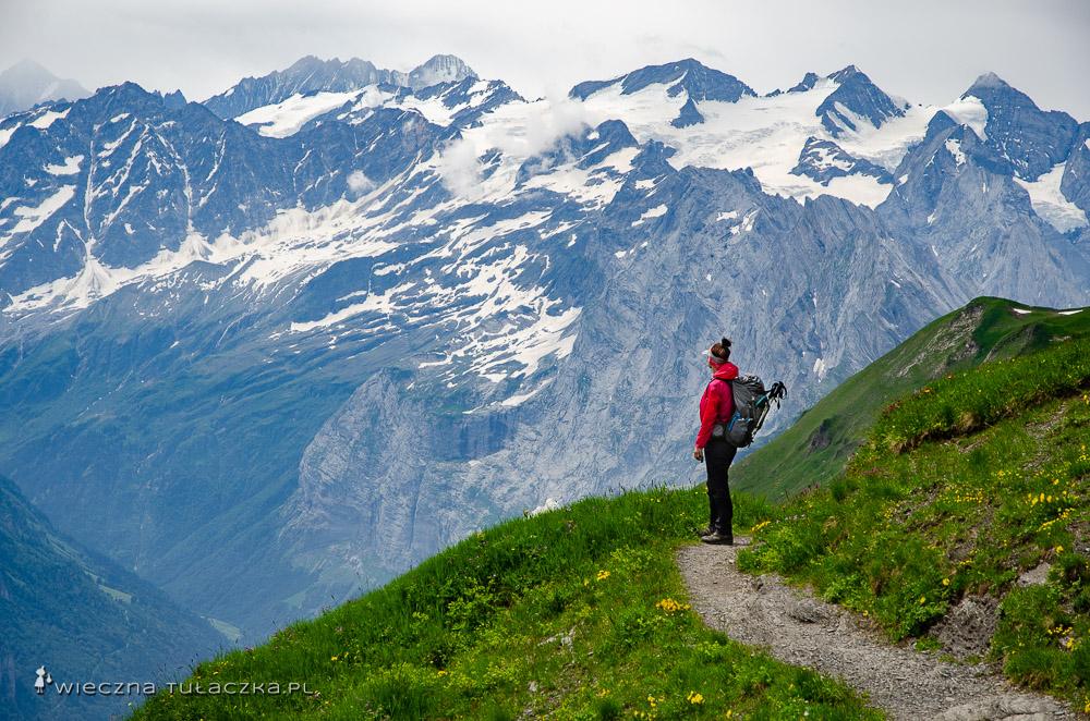 Via Alpina, opis wędrówki
