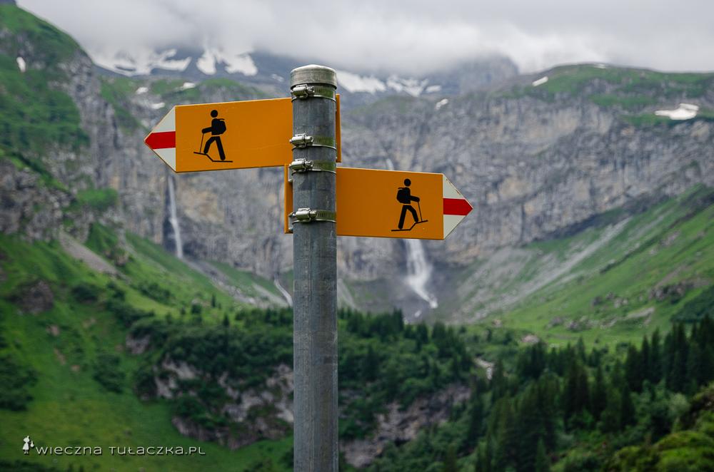 Via Alpina oznakowanie