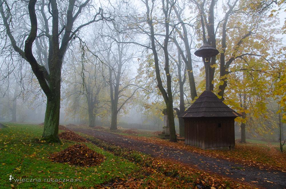 Najlepsze miejsca w Czeskim Raju
