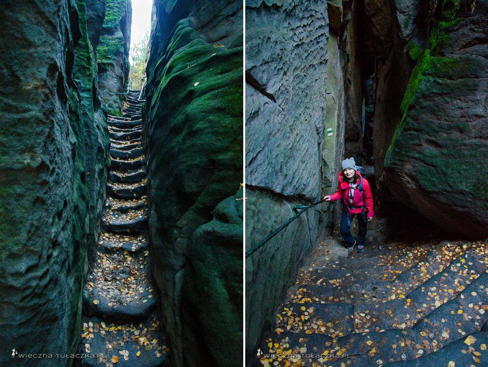 Szlaki w Prachowskich Skałach