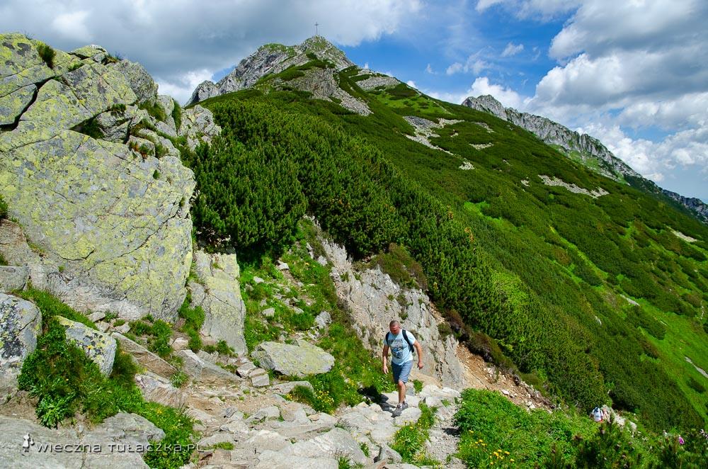 Szlak z Kondrackiej Przełęczy