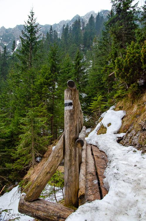 Ścieżka nad Reglami w Tatrach